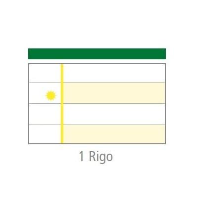 """Quaderno MaxiDidattico """"1 Rigo"""" Tecnoteam"""
